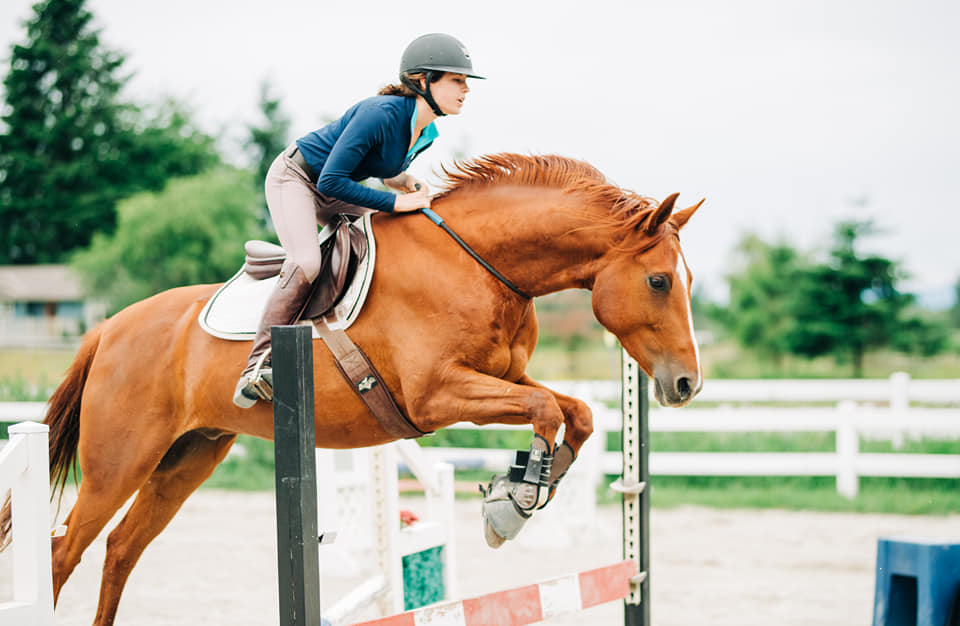 Typical Beginner Equine Riding Blunders